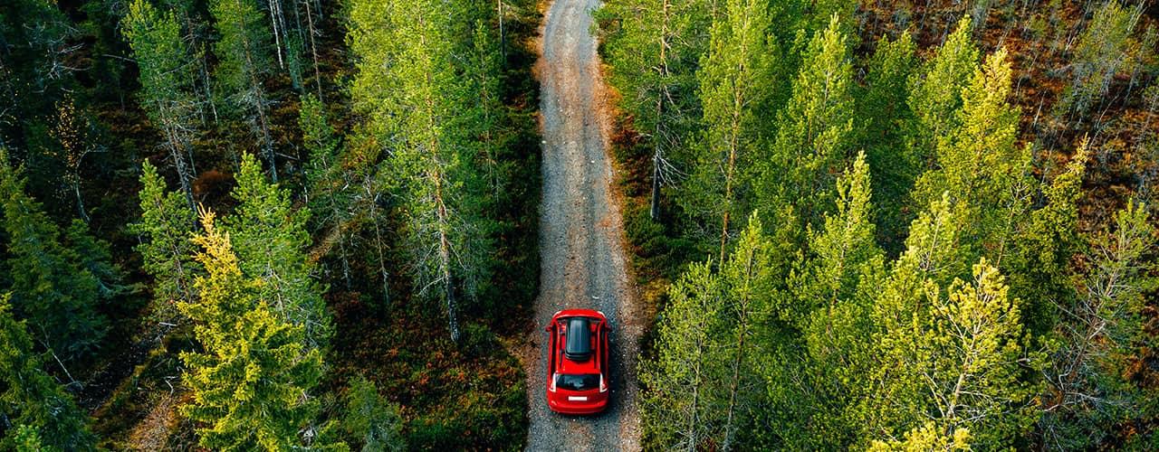 AlterWEgo s'engage à limiter l'impact de ses véhicules sur l'environnement en plantant plus de 2000 arbres en France en 2021